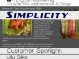 Lilly Silks - Customer Spotlight - Simplicity