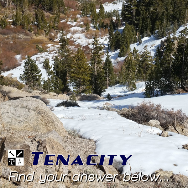 Tenacity, an Interfanatic Quality. Interfanatic Digital Marketing founder Ryan Delane takes or creates every image you see in our social feed.